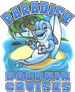 Paradise Dolphin Cruises